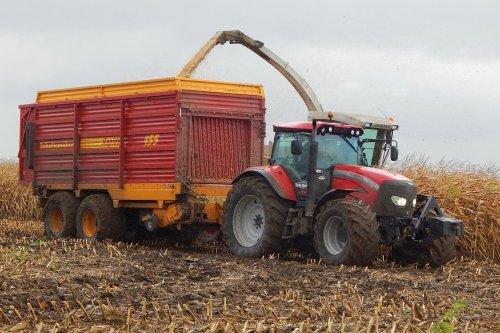 Foto van een Mc-Cormick TTX 230, bezig met maïs hakselen. Loonbedrijf De Bruin in de regen..  Zie ook: http://www.maishakselaars.nl/