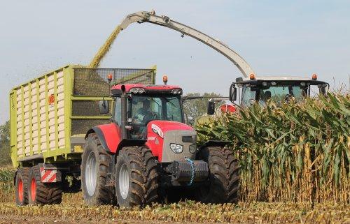 Loonbedrijf Jennissen Den Dungen in de mais.  Meer op: http://www.landbouwpowers.nl. Geplaatst door ronaldclaas op 08-11-2014 om 18:45:57, op TractorFan.nl - de nummer 1 tractor foto website.