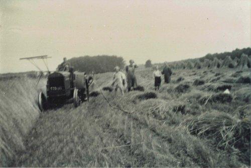 Foto van een McCormick-Deering 10-20 foto uit 1937 aan het graanmaaien met een deel van de familie. Mijn opa zit op de trekker, hem zie je niet omdat hij nauwelijks boven het stuur uitkwam. Daarachter op de graanmaaier zijn vader.