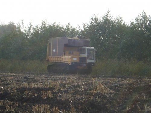 Foto van een Mitsubishi LD700 Rupsdumper, bezig met mais dumperen.. Geplaatst door jan auke op 14-10-2008 om 21:39:58, op TractorFan.nl - de nummer 1 tractor foto website.