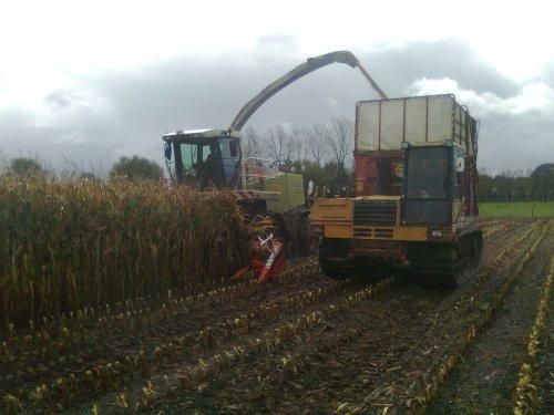 Foto van een Mitsubishi Rupsdumper, bezig met maïs hakselen.. Geplaatst door hansie op 26-10-2011 om 20:25:33, op TractorFan.nl - de nummer 1 tractor foto website.