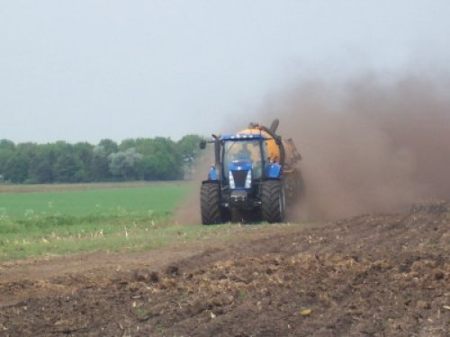 Picture New Holland TG 233