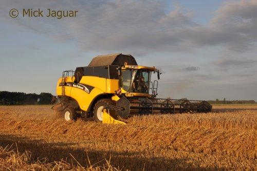 New Holland CX 860, bezig met tarwe te dorsen.  Filmpje? -> https://www.tractorfan.nl/movie/46750/