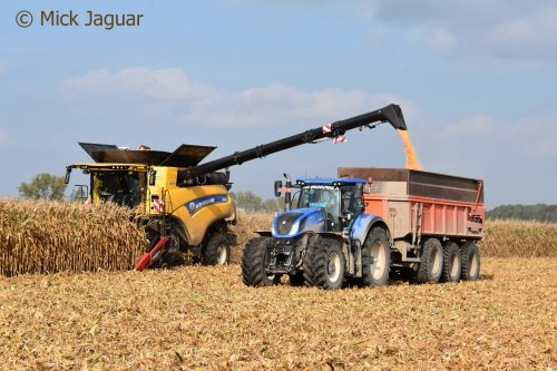 New Holland CR 10.90 en New Holland T7.290 met KVH kipper, Loonwerken Van Holderbeke uit Zomergem (B)