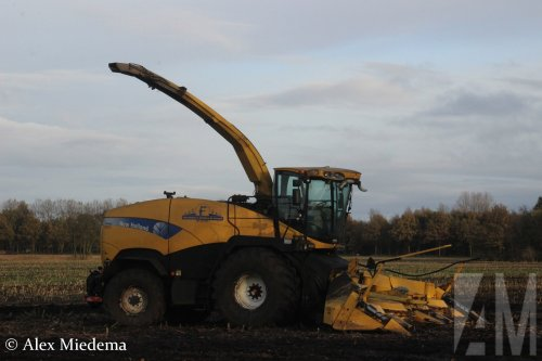 New Holland FR 9080 van Alex Miedema