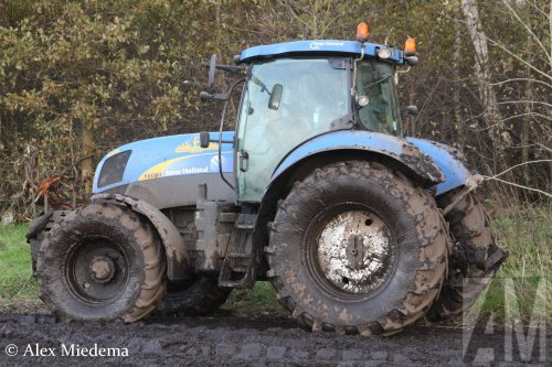 New Holland T 6030 van Alex Miedema