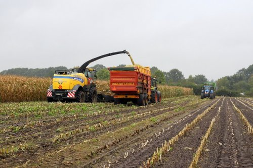 New Holland FR 500 van pekkerietfan