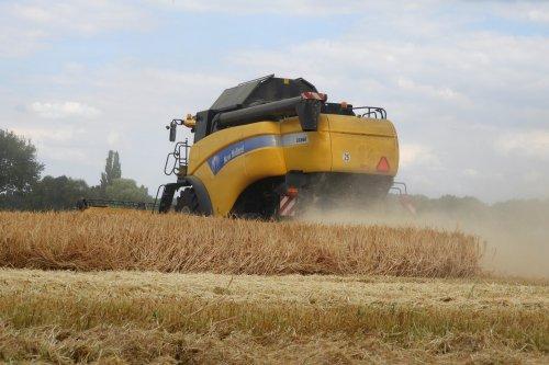 Graan dorsen  https://youtu.be/PRNzuIzDcsU. Geplaatst door pekkerietfan op 03-08-2018 om 14:08:38, op TractorFan.nl - de nummer 1 tractor foto website.