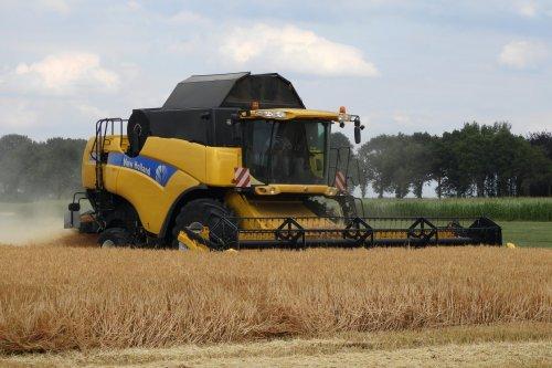 Graan dorsen  https://youtu.be/PRNzuIzDcsU. Geplaatst door pekkerietfan op 06-08-2018 om 09:34:40, op TractorFan.nl - de nummer 1 tractor foto website.