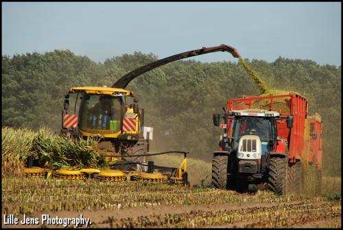 Foto van een New Holland FR 700. Geplaatst door Lille Jens op 14-09-2018 om 11:00:32, op TractorFan.nl - de nummer 1 tractor foto website.