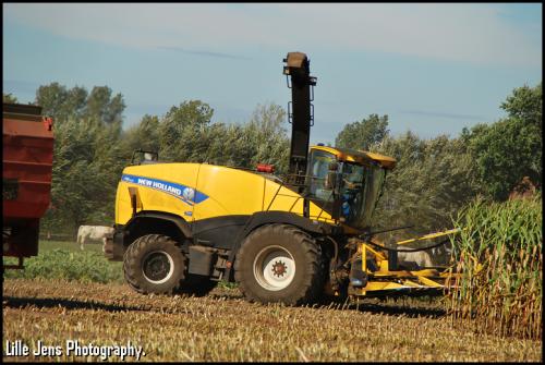 Foto van een New Holland FR 700. Geplaatst door Lille Jens op 14-09-2018 om 11:02:18, op TractorFan.nl - de nummer 1 tractor foto website.