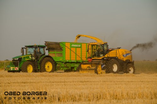 New Holland FR 9040 van Obed Borger