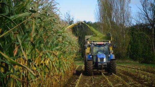 Foto van een New Holland TL 90 A. Geplaatst door janssens op 24-01-2019 om 20:10:59, op TractorFan.nl - de nummer 1 tractor foto website.