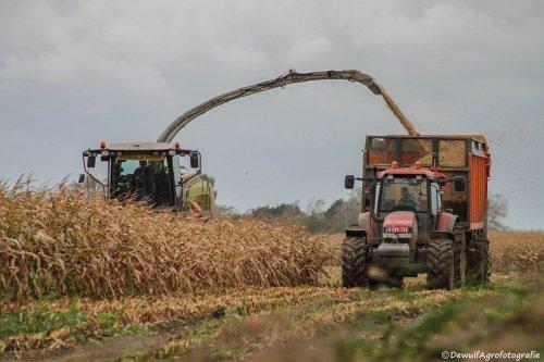 Foto van een New Holland TM 165. Geplaatst door RVanhessche op 09-04-2019 om 16:29:52, op TractorFan.nl - de nummer 1 tractor foto website.