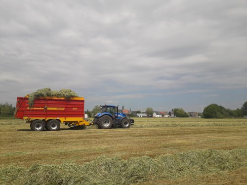New Holland T 7.230 van casexl956