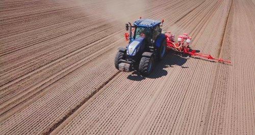 Loonwerken Vanoppen BVBA met een NH T7.225 en een Gaspardo maïszaaimachine.. Geplaatst door loonwerken-vanoppen op 19-05-2019 om 20:02:05, op TractorFan.nl - de nummer 1 tractor foto website.