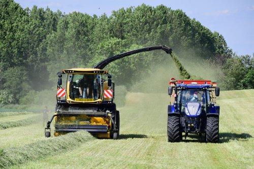 Foto van een New Holland FR 650. Geplaatst door jd7920 op 02-06-2019 om 19:49:00, op TractorFan.nl - de nummer 1 tractor foto website.