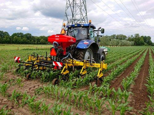 Loonbedrijf W Timmer & Zn. (ermelo) × op de foto met een New Holland T6.160 druk bezig met het inzaaien van gras tussen de maïs rijen.