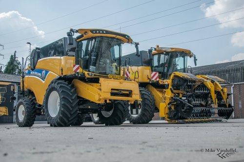 Mooi optijd afgeleverd, nog een dikke week en het eerste graan komt alweer van het veld!  New Holland CX7.90 & CX8050 Loonbedrijf Cuyvers - Pelt (B)