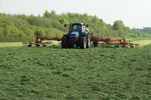 Gras harken.   Deze combi en nog twee anderen in de video:  https://youtu.be/09q2V9zfBf8. Geplaatst door pekkerietfan op 30-06-2019 om 18:53:36, op TractorFan.nl - de nummer 1 tractor foto website.