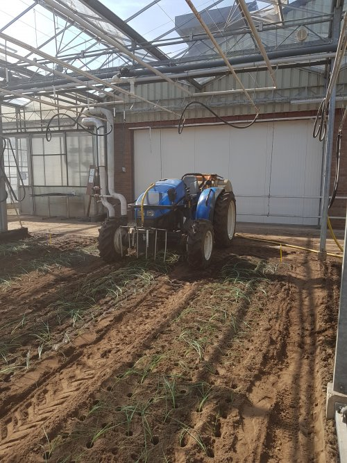 Aangiften van prei planten met de New holland in de kas. Geplaatst door Ford6000  op 30-08-2019 om 17:14:43, met 6 reacties.