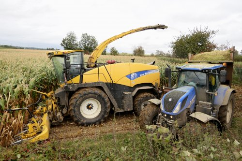 New Holland FR 9080 van dwho926