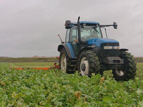 Foto van een New Holland(ford) 8160 Vandaag ook meer eens een hoekje bladramanas geklepeld.. Valt nog niet overal mee kwa nattigheid op 't land