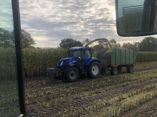 Foto van een New Holland T 77.165s bezig met mais hakselen. Machtig dikke kipper er achter.. Geplaatst door Ruben-Wind op 10-01-2020 om 10:08:57, met 3 reacties.