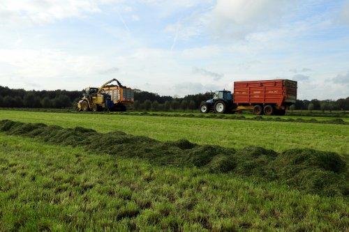 New Holland Meerdere van pekkerietfan