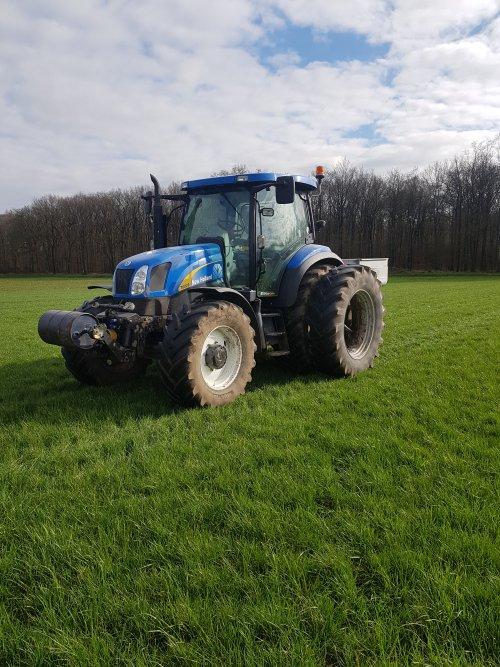 Foto van een New Holland T 6020 Elite grootste gedeelte van de kunstmest ligt erop. Geplaatst door supergerben op 19-03-2020 om 10:31:56, op TractorFan.nl - de nummer 1 tractor foto website.