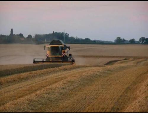 Nog een oude foto van 2015 gevonden van loonbedrijf claikens nog met de nh cx 8060. Geplaatst door Theuny op 09-04-2020 om 12:09:38, op TractorFan.nl - de nummer 1 tractor foto website.