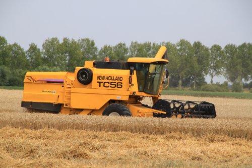 Foto van een New Holland TC 56. Geplaatst door alfredo op 24-07-2020 om 14:31:42, met 3 reacties.