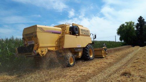 Foto van een New Holland TX 62 in de wintertarwe.. Geplaatst door tombo op 26-07-2020 om 12:48:50, op TractorFan.nl - de nummer 1 tractor foto website.