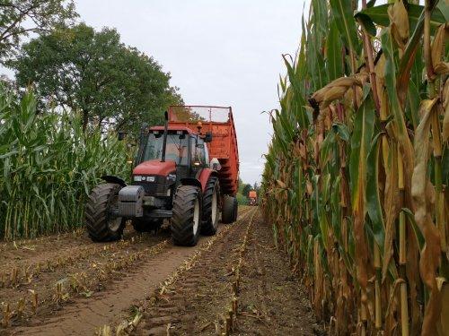 Foto van New holland ts 100 bezig met mais hakselen.. Geplaatst door joostmc-cormick op 11-09-2020 om 08:32:29, met 2 reacties.