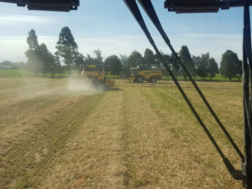 de combines hebben hun eerste klus er weer op zitten, graszaad. Geplaatst door NZDairy op 29-12-2020 om 10:19:48, op TractorFan.nl - de nummer 1 tractor foto website.