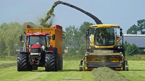 VIDEO: https://www.youtube.com/watch?v=AH2k9q3z21g Derde snede gras hakselen voor Maatschap Steenbeek in Lunteren met een New Holland FR600 van Loon- en Grondverzetbedrijf Nap VOF uit Ede. Het transport werd gedaan met een Case IH Puma 200 + 230 CVX met Veenhuis Super Silagewagens. De kuil werd aangereden met een Valtra met Holaras kuilverdeler.