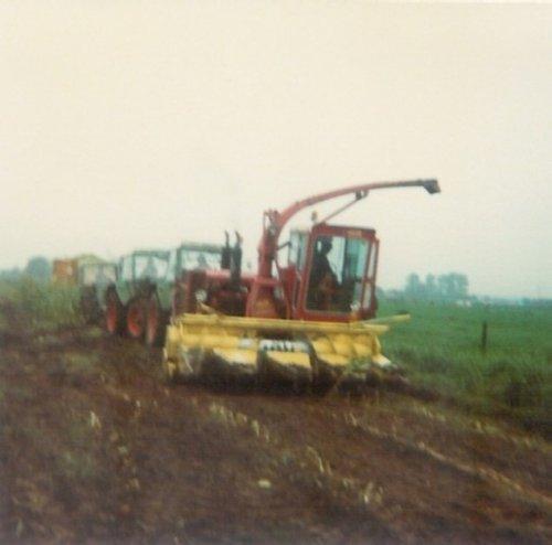 Loonbedrijf Panhuis aan het mais hakselen 1978\1979, 3 keer Fendt 610   New Holland 1880 voor de kipper.