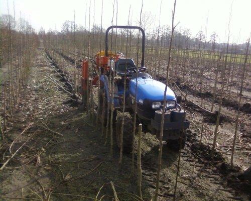 slechte bomen er uit rooien en goede rond steeken met de kleine nh.. Geplaatst door mp-jd6620 op 10-03-2012 om 16:15:17, op TractorFan.nl - de nummer 1 tractor foto website.
