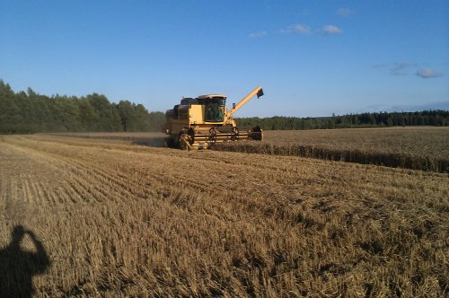 New Holland TC 56 van rick-mandersloot