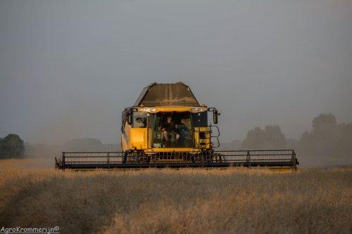 Foto van een New Holland CR8080, bezig met maaidorsen.  Loonbedrijf van der Woerd aan het koolzaad dorsen met hun New Holland CR8080!   Meer? kijk dan op: https://www.facebook.com/media/set/?set=a.598382650212817.1073741825.523138977737185&type=1