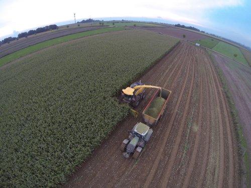 Foto van een New Holland FR 9050, bezig met maïs hakselen.. Geplaatst door JDL001 op 14-10-2013 om 20:41:34, met 8 reacties.