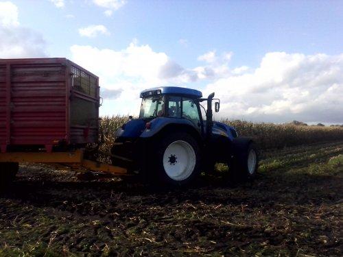 Foto van een New Holland T 7520, bezig met maïs hakselen.. Geplaatst door arno1234 op 29-10-2013 om 15:20:07, op TractorFan.nl - de nummer 1 tractor foto website.
