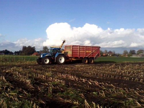 Foto van een New Holland T 7520, bezig met maïs hakselen.. Geplaatst door arno1234 op 29-10-2013 om 15:20:14, op TractorFan.nl - de nummer 1 tractor foto website.