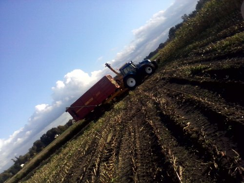 Foto van een New Holland T 7520, bezig met maïs hakselen.. Geplaatst door arno1234 op 29-10-2013 om 15:20:16, op TractorFan.nl - de nummer 1 tractor foto website.