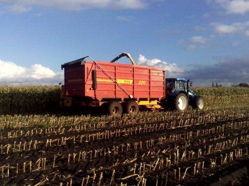 Foto van een New Holland T 7520, bezig met maïs hakselen.. Geplaatst door arno1234 op 29-10-2013 om 15:20:18, op TractorFan.nl - de nummer 1 tractor foto website.
