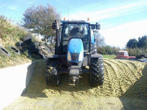 Foto van een New Holland T 6010, bezig met maïs inkuilen.. Geplaatst door RobinVL op 03-11-2013 om 18:19:32, met 7 reacties.