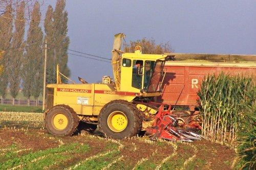 Foto van een New Holland 2405, bezig met maïs hakselen. Busschaert Aalter, maisoogst 2005. Geplaatst door Martin Holland op 21-11-2013 om 15:48:05, op TractorFan.nl - de nummer 1 tractor foto website.