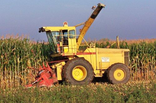 Foto van een New Holland 2405, bezig met maïs hakselen. Busschaert Aalter, 2005. Geplaatst door Martin Holland op 21-11-2013 om 15:51:15, met 3 reacties.