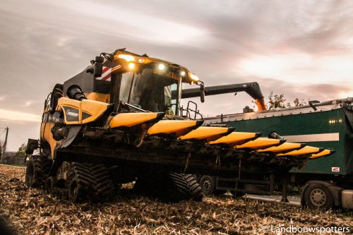 Foto van een New Holland CX 8050, bezig met maaidorsen. De Clercq - Kruishoutem. Geplaatst door tractorfreek op 15-01-2014 om 21:39:59, met 3 reacties.