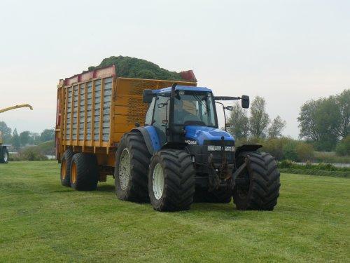 Foto van een New Holland TM 165, bezig met gras hakselen.. Geplaatst door international956 op 22-01-2014 om 18:35:18, met 4 reacties.